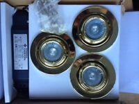 Brass Eyeball Downlighting x2 boxes