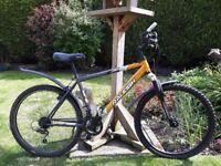 Two adult mountain bikes