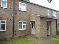 Immaculate condition 1 bed flat for rent! Caxton Street Groundfloor Flat!