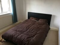 Spare double room to let!