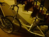 SWAPPING OR SELLING LADYS STEP THOW BIKE FOR £150
