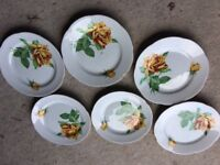 Set 6 beautiful vintage bone china plates with yellow roses