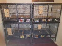 Big 2 stack bird cages