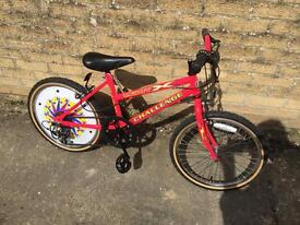"Childs Bike. As good new condition. Serviced. 20"" Wheels."