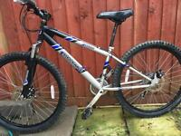 "Adult bike shockwave 26"" with fat tyre"