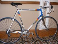 Raleigh Cadet Team Panasonic Colours Retro Racing Bike