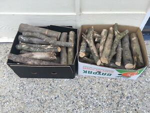 Firewood $10/20kg Brighton Brisbane North East Preview