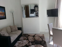 Stylish one bedroom first floor apartment to rent in Leytonstone E11