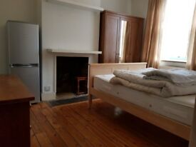 Large bright room available in Shared house located close to Turnpike Lane,N17