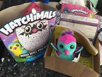 Hatchimals - Teal Hatchimal