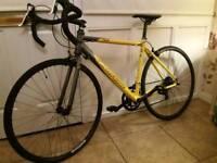 Carerra road bike TDF