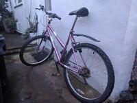 Dunlop Sport Club Moutain Bike