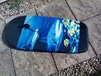 Dolphin patterned bodyboard