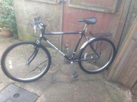 Diamond back topanga mountain bike
