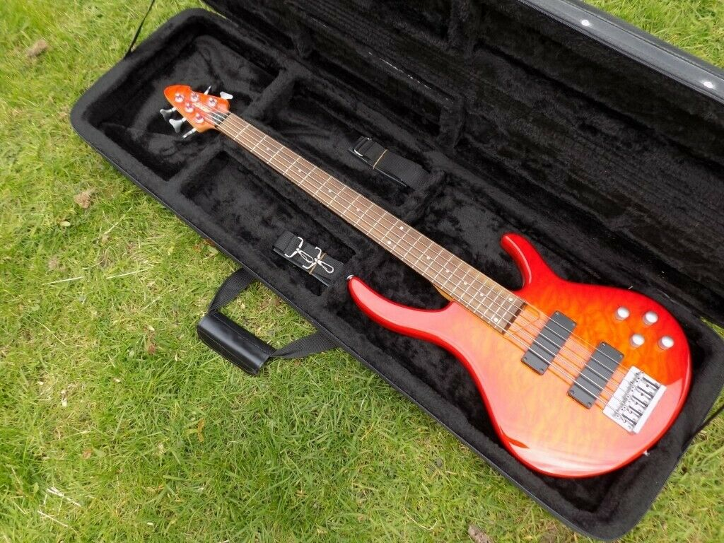 7fd349308d7 5 string bass - Peavey International Series plus Kinsman hard foam case