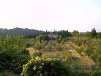 TUSCANY ITALY - Podere il Cardellino - up to 5 person