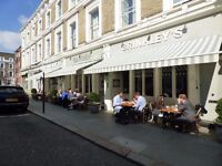 Brinkley's Chelsea ~ Waiting staff and Bar back