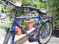 gents mountain bike