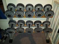 technogym dumbbells weights