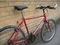 "LRG 21"" Raleigh Jackal mountain bike - central Oxford - ready to ride"
