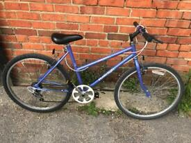 Raleigh Calypso Mountain Bike. Serviced, Very Good Condition. Free Lock, Lights, Delivery