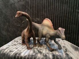 Dinosaur Collection needs new home