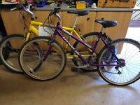 Ine mens and one ladies bike for sale