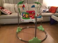 Fisherprice Rainforest Jumperoo in excellent condition - everything works
