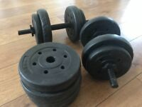 Dumbbells for Champions arms