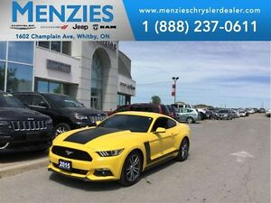 2015 Ford Mustang EcoBoost Premium, Navi, Bluetooth, Clean Carpr