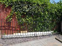 Driveway Gate- steel, powder coated finish