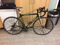 Wilier Carbon Road Bike - Medium. Ironman.