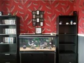 4 foot aquarium and stand plus fish