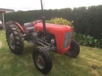 Massey Ferguson 35 1959 - Fully Restored, Runs and Drives as it should. Road Legal.