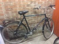 Lovely bike with shopping rock , bell and stand just got a new one hence sale