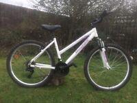 "Bachini ladies girls 17.5"" alloy hard tail mountain town bike bicycle"