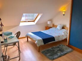Short term room to let