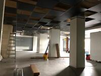 Suspended ceiling black