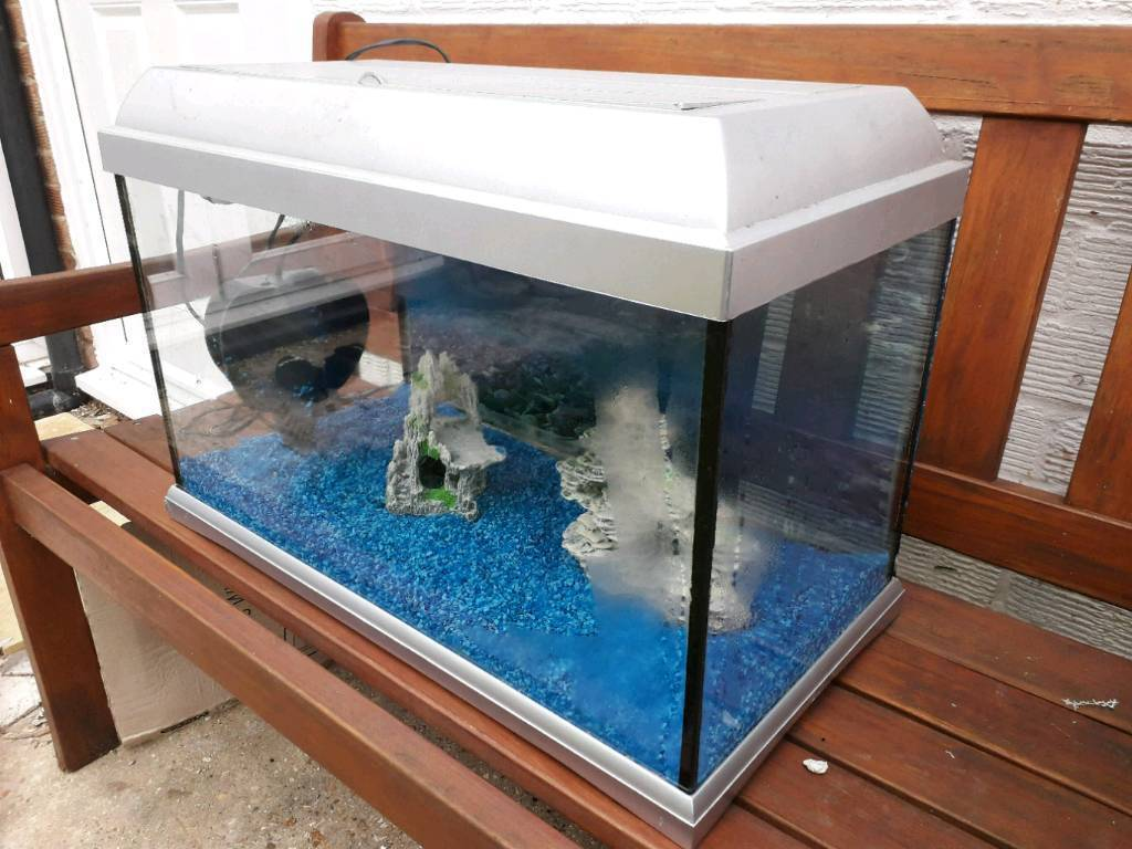 Fish tank with 2 stone corals . Water pump . Water solutions and net and cleaning magnets