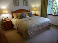 Bedding & Curtains