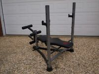 Energetic Weight Bench Stand & Leg Exerciser