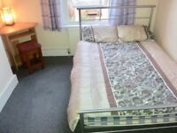 Large single room all inclusive