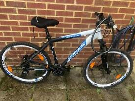 Lakes Unisex Mountain Bike
