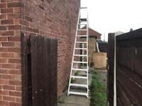 Industrial Step ladders 10 foot
