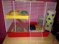Accessories for a hamster