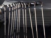 Full Set of Ladies Wison Pro-Staff Golf Clubs