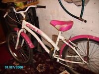 Ladies / Girls Cruiser Bike