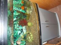 Aqua One Aquarium Fish Tank with Cabinet and a Fluval 205 filter plus 2 lovely Gold Fish