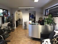 Part-time Experienced Hairstylist :: Thursday & Friday 9am to 5pm Saturday 9pm to 2pm