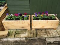 Wooden planters for bedding plants
